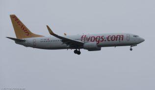 PegasusAirlines_B738_TC-ARP_ZRH171029