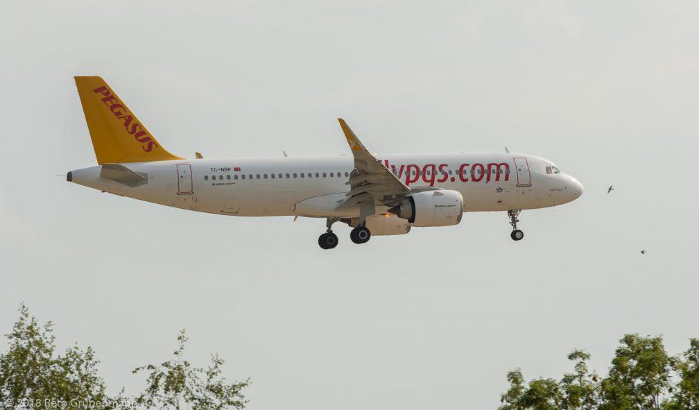 PegasusAirlines_A20N_TC-NBP_ZRH180804